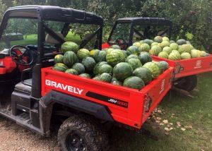 CSA Farm Green Bay WI watermelon