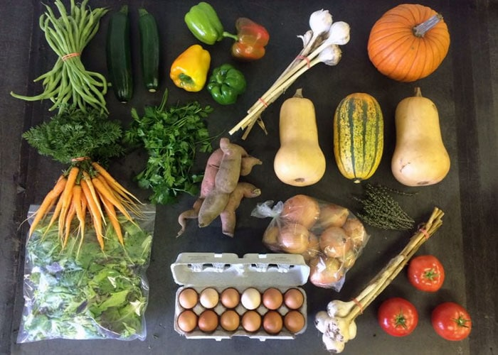 CSA Farm Green Bay WI weekly share example