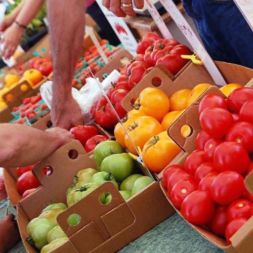 CSA Farm Green Bay WI farmers market